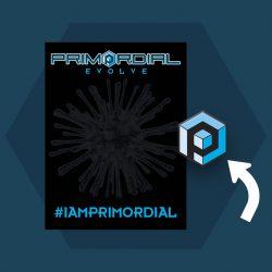 Primordial Radio Pin