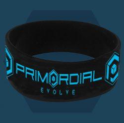 Primordial Radio Wristband