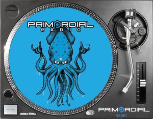 Primordial Radio Slip Covers