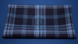 Pride of Primordial Tartan Fabric