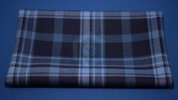 Pride of Primordial Tartan Fabric