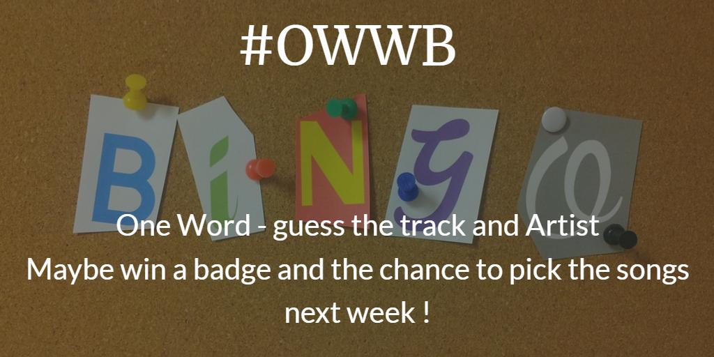 #owwb one word wednesday bingo flyer