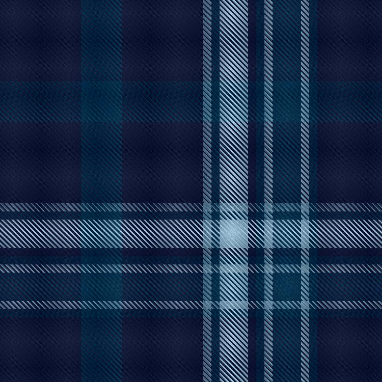 Pride of Primordial Radio tartan - closeup