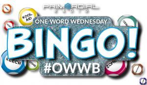 One Word Wednesday Bingo - New Website Logo