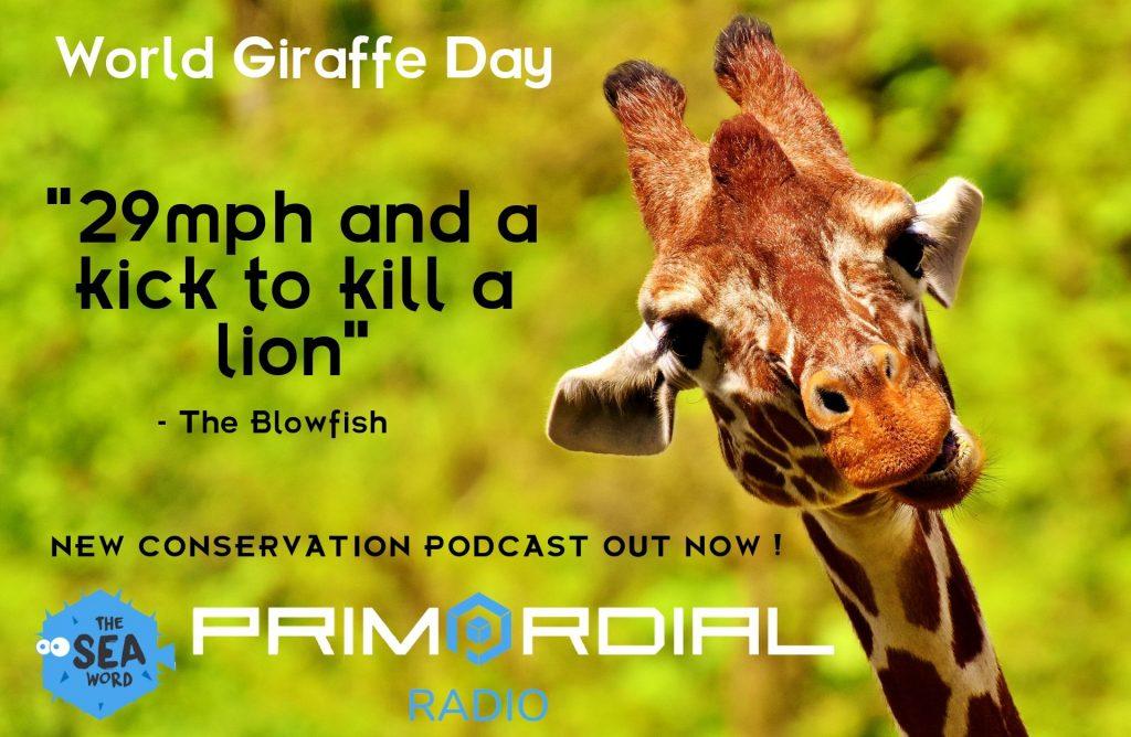 World Giraffe Day Podcast