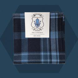 Tartan Pocket Square - Pride of Primordial Tartan Range