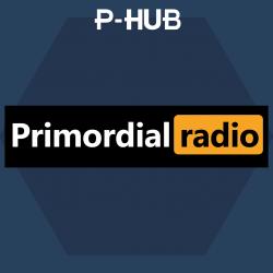 P-Hub